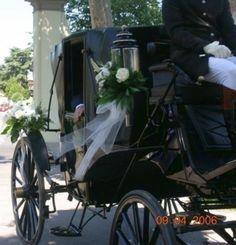 Cavalli e Carrozze, il Matrimonio in Carrozza The Wedding Italia