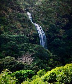 Fairy Falls opposite Karekare beach, West Auckland, By Geeta Uka