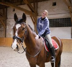 Siggi ist da - Bienes neues Pferd