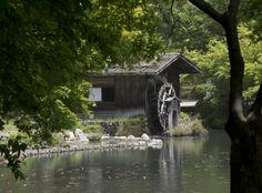 Water mill At Nagoya Higashiyama Zoo and Botanical Gardens, Japan