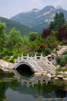 Mount Tai - The Sacred Mountain