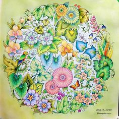 246 Best The Magical Jungle Images Johanna Basford Coloring Book