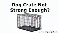 Best Heavy Duty Dog Crate Promo. Visit our site to find the best indestructible escape proof dog kennel for your pet.