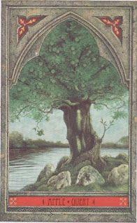 Macieira Celta