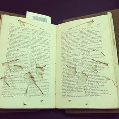 """Some very impressive insect damage to a Samoan dictionary!"" from Smithsonian Libraries --  At first, I thought this was abstract book art, but knowing what it really is, it's very sad!"