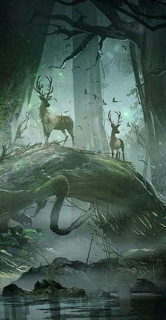 beautiful art 51 Enigmatic Forest Concept Art That Will Amaze You Fantasy Places, Fantasy World, Fantasy Artwork, Digital Art Fantasy, Fantasy Paintings, Digital Paintings, Fantasy Creatures, Mythical Creatures, Fantasy Forest