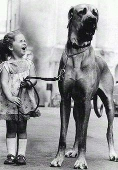 "The #1960s, a #dog... #Love! Some things never change. ""Highly recommend!"" #99c #asmsg #cr4u http://myBook.to/RomeoJulietPetie …"