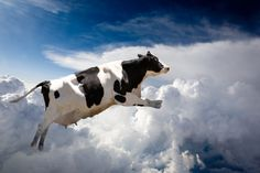 AT&Ts Flying COW isnt what you think it is (thank goodness)