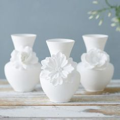 Porcelain Cosmos Vase