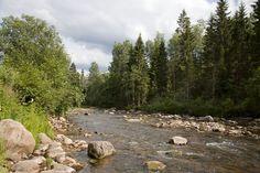 Amata River, Gauja National Park, Latvia.