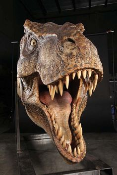 Full-scale male T-Rex head display from Jurassic Park