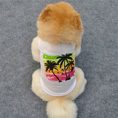 Palmtree Summer White Dog Vest (4 sizes). 🐶 Online shopping for Little Dogs Supplies with free worldwide shipping.🐶 Be sure you follow for daily pics & offers! 🐶  . . . #dogs #doggy #dog #doglover #cutedogs #doglovers #puppy #love #frenchie #bulldog #westie #hund #bully #frenchbulldog #pet #animal #chihuahua #labrador Summer Vest, Summer Dog, Dogs Online, Dog Vest, Dog Clothing, White Dogs, Westies, Little Dogs, Dog Supplies