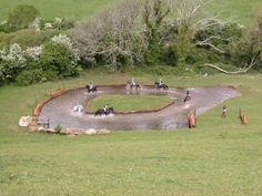 This could be our horse pond with a duck house in the middle. multifunction.