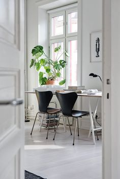 Black & white workspace with greenery