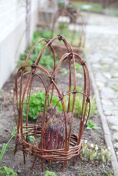 Blomsterverkstad: Snabba pionstödet