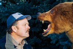 How To Escape From 11 Deadly Animal Attacks