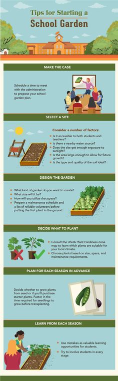 School gardens are blossoming across the country. Over the past decade,  school…