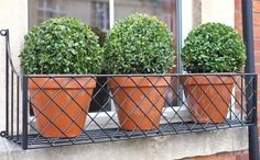 We specialise in window boxes, manufacturing beautiful window boxes with traditional and contemporary designs out of cast aluminium, steel and fibreglass. - Steel Window box, Metropolitan, x in Black -