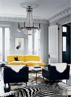 zebra rug & yellow couch