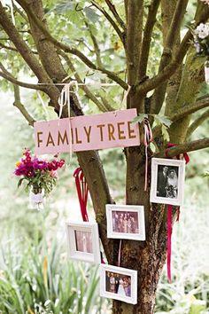 Family Tree.. Photos of family hung in tree