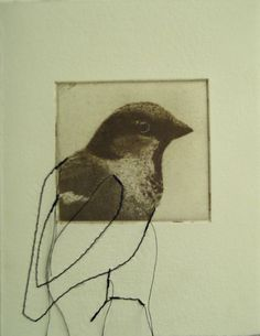 original etching of a bird hand pulled by Fleurografie on Etsy, $9.49