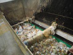 Start of food-waste processing Anaerobic Digestion, Winter Pictures, Food Waste, Winter Photos