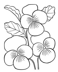 Flowers Coloring Pages For Adults: Flowers Coloring Pages For Adults