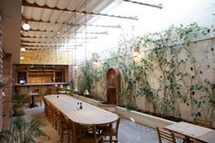 Bringing the outdoors indoors! At Le Pain Quotidien Insurgentes, Mexico City