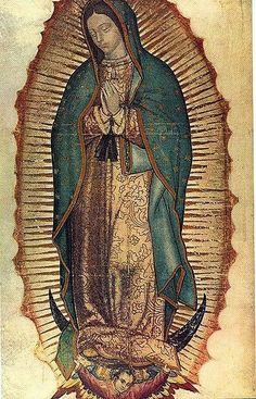 ¿Qué quieres saber acerca de la Virgen de Guadalupe?: La Virgen de Guadalupe
