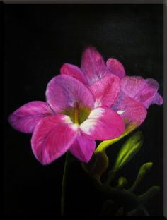 Oil Painting of Pink Flowers by snagle2009, via Flickr
