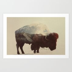 Buy Buffalo by Andreas Lie as a high quality Art Print. Worldwide shipping available at Society6.com. Just one of millions of products available.