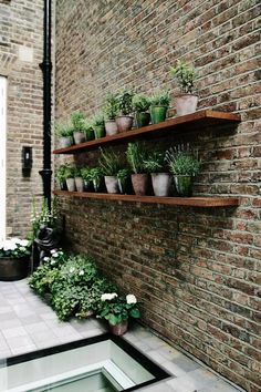 This small roof garden features potted herbs on rustic shelves, which offer a fantastic way of maximising on space outdoors. Small City Garden, Small Courtyard Gardens, Small Courtyards, Small Garden Design, Small Gardens, Small Garden Landscape, Small Terrace, Vertical Garden Wall, Vertical Gardens