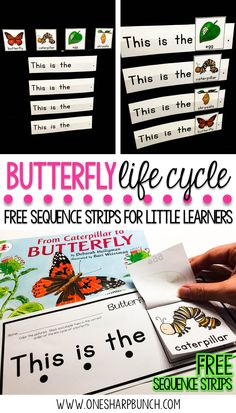 Butterfly Life Cycle Freebie Teach your Kindergarten and primary students all about the life cycle of a butterfly with this butterfly life cycle poem, butterfly craft and FREE butterfly life cycle sequence strips! They are the perfect way to bring a littl Science Lessons, Life Science, Science Projects, Science Experiments, Science Tools, Science Quotes, Science Facts, Earth Science, Life Cycle Craft