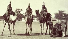 Men of Bikanir on Camels in Chain Armour: Prince of Wales Tour of India 1875-6 (vol.6)  1875-76