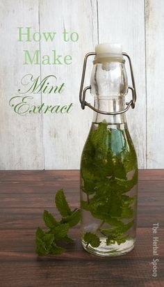How to make mint extract, perfect for baking or gifts- The Herbal Spoon (Homemade Butter Mints) Herb Recipes, Canning Recipes, Real Food Recipes, Mint Recipes, Flavored Oils, Infused Oils, Chile Picante, Fleur Orange, Mint Extract