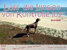 Lassdie Illosion von Kontrolle los!