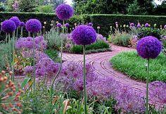 Tuscan Garden Design Plants For Italian Gardens #CourtYard #Landscape #Outdoor  ༺༺  ❤ ℭƘ ༻༻  IrvineHomeBlog.com