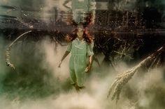 Elena Kalis: Under the mangroves