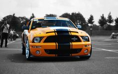 yellow Mustang Shelby | yellow ford mustang shelby