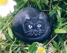 Painted pebble of wide eyed black Cat