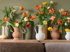 Tulips are like no other flowers for spring and are just perfect for decorating.