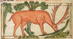 Animal detail from medieval illuminated manuscript, British Library Harley MS 3244, 1236-c 1250, f41v