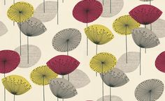 Dandelion Clocks (DOPWDA102) - Sanderson Wallpapers - A fun and funky retro 50's design with stylised dandelion flowers in bold colour combinations.  Available in 4 colours – shown in grey, yellow and raspberry on cream. Please ask for a sample for true colour match.
