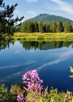 Majestic Places to See in Wyoming Perfect for Every Outdoor Enthusiast Snake River. Jackson Hole, Wyoming.
