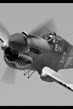 WW2 Plane.. Flying Tiger P-40