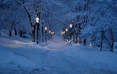 Snowy Night, Bethlehem, Pennsylvania  photo via satu