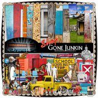 Gone Junkin