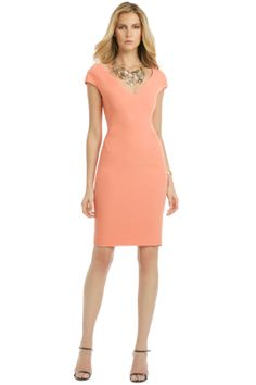 925cd62a694 Rachel Roy Tea Rose Brandy Dress