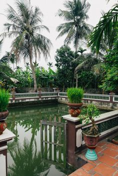 A Overnight Village Stay in Vietnam — Nomad in Nihon