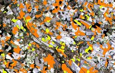 Toulouse, France, @ESA able to discriminate between two types of crops: sunflower (orange) and maize (yellow).